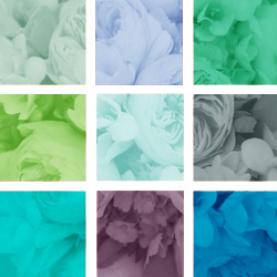 Wedding Fan Templates -Cool Colors