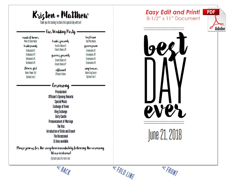 Best Day Ever 2 Wedding Program Fan -Cool Colors