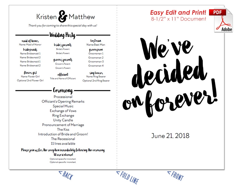 Decided on Forever Watercolor Wedding Program Fan -Cool Colors